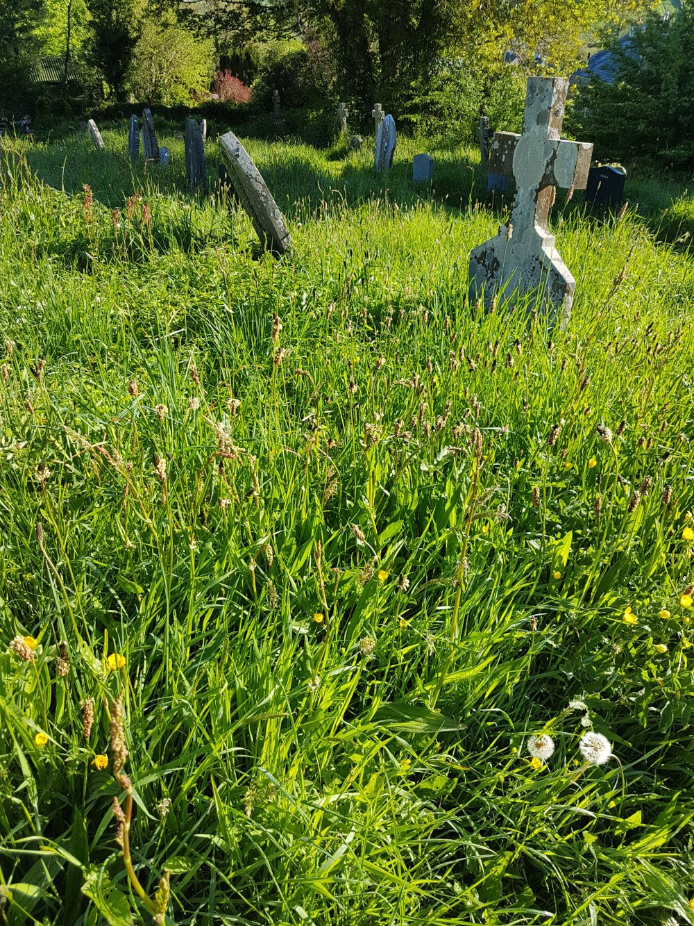 Marldon Cemetery