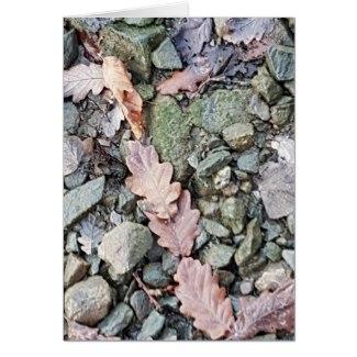 shore_leaves_greeting_card-r1c95b4d73a4d48829148126d0887c833_xvuat_8byvr_1024