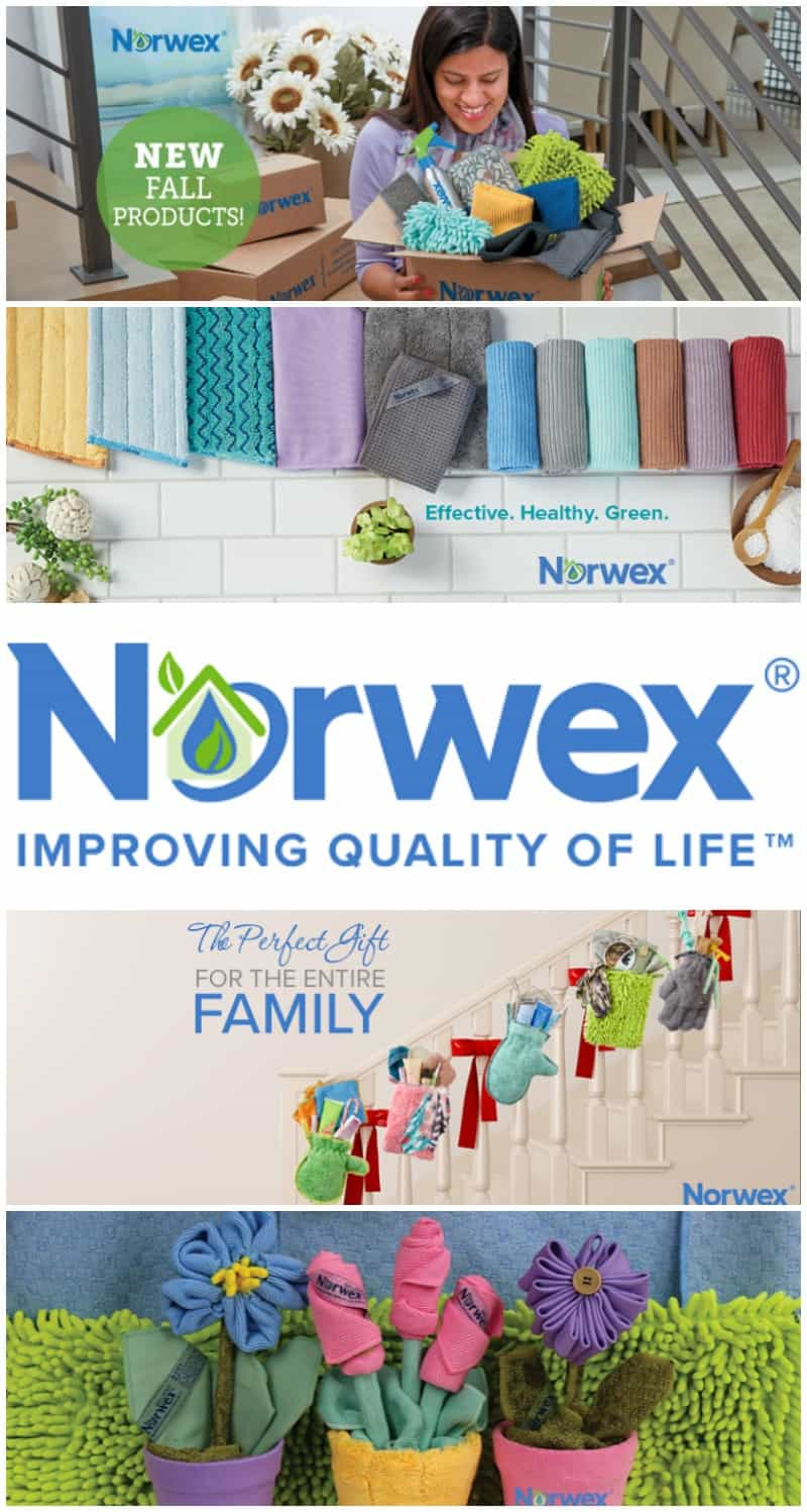 norwex-business-opportunity